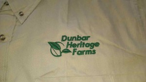 embroiderery_shirt_dhf